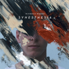 Synesthesia  artwork