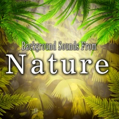Background Sounds from Nature