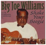 Big Joe Williams - The Death of DR. Martin Luther King