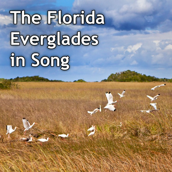 The Florida Everglades in Song