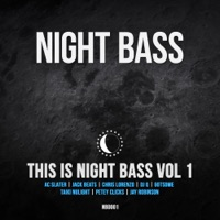 This is Night Bass, Vol. 1