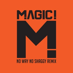 No Way No (feat. Shaggy) [Native Wayne Jobson and Barry O'Hare Remix] - Single Mp3 Download