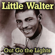 Little Walter - Boom Boom out Go the Lights
