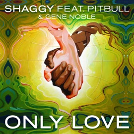 Only Love Feat Pitbull Gene Noble