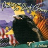 Pickin On the Black Crowes A Bluegrass Tribute