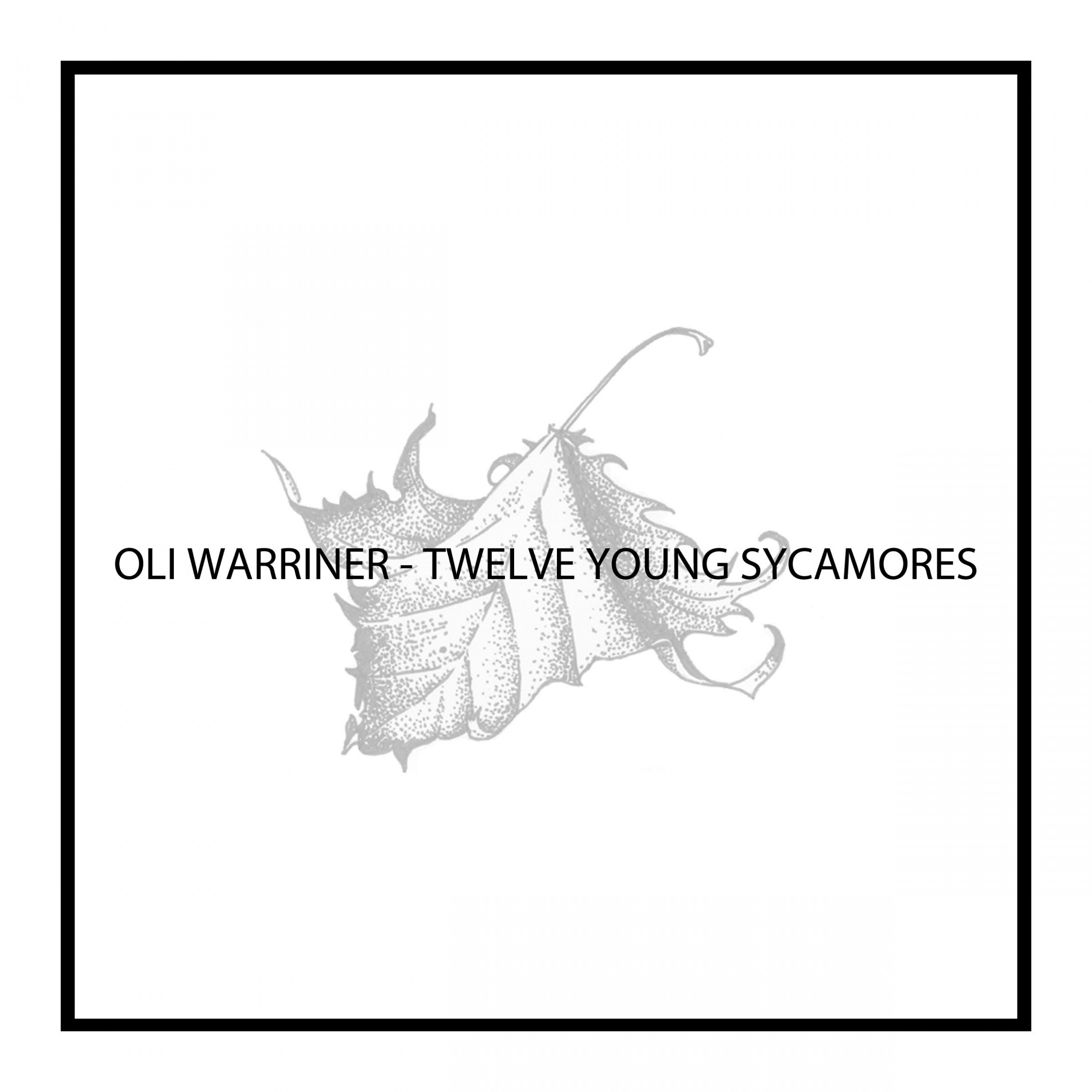 Twelve Young Sycamores - EP