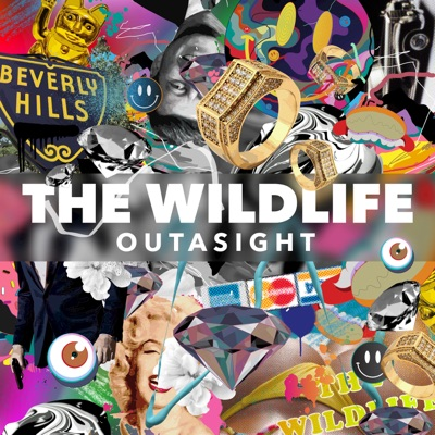 The Wild Life cover