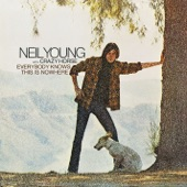 Neil Young & Crazy Horse - Cinnamon Girl