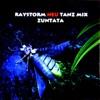Raystorm -Neu Tanz Mix- ジャケット写真