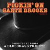 Pickin On Garth Brooks Volume 2 Going to the Rodeo A Bluegrass Tribute