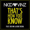 Nico & Vinz - That's How You Know (feat. Kid Ink & Bebe Rexha) artwork