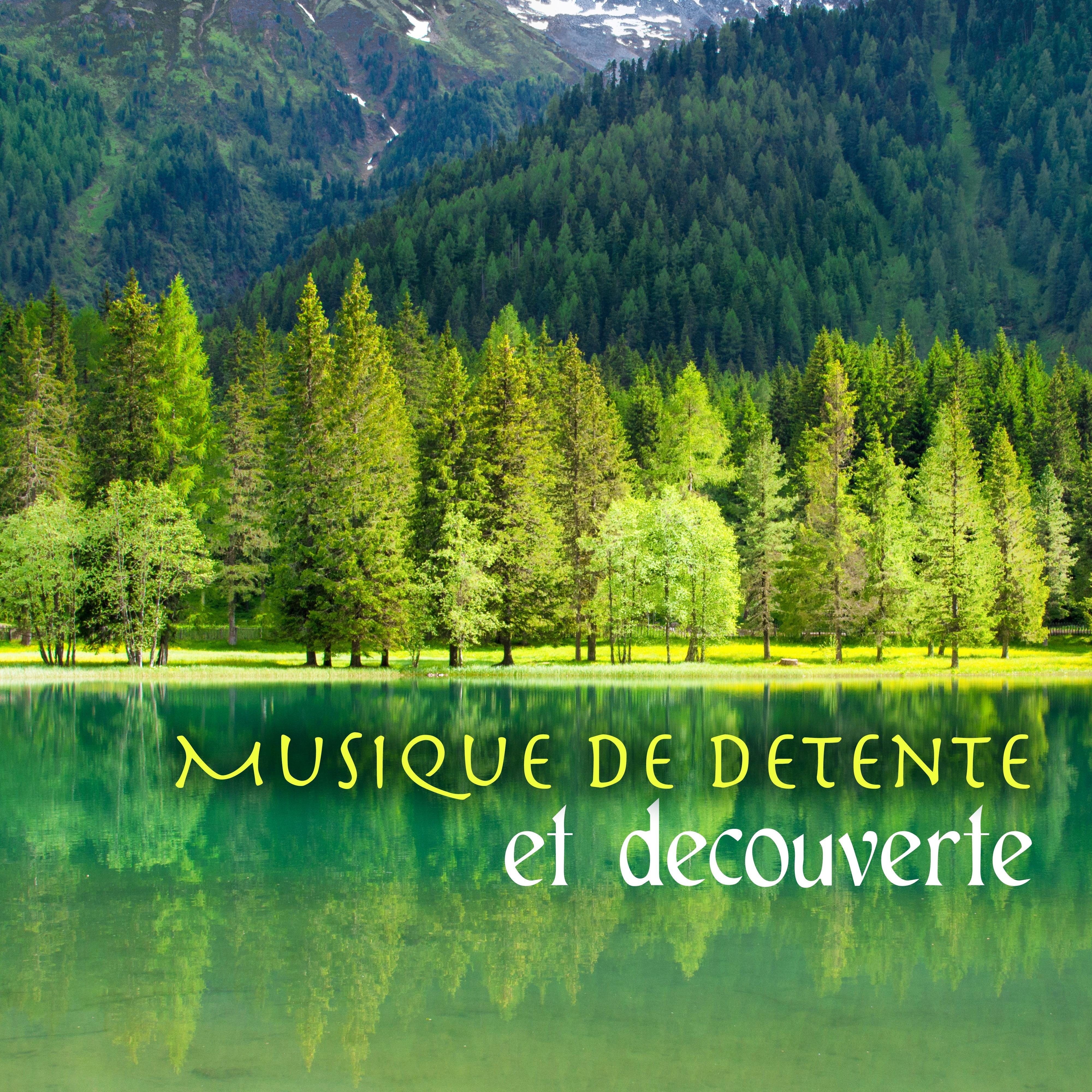 Musique de detente et decouverte - sons de la nature