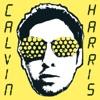 I Created Disco, Calvin Harris