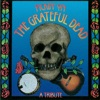 Pickin On the Grateful Dead A Tribute