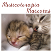 Músicoterapia Mascotas: Música para Relajar Perros y Música para Gatos Calmante