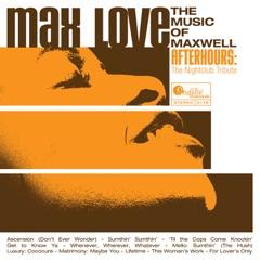 Max Love: The Music of Maxwell - The Nightclub Tribute