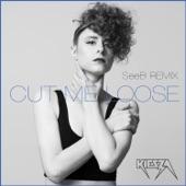 Cut Me Loose (SeeB Remix) - Single