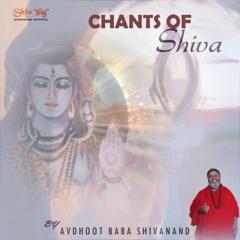 ShivYog Chants: Chants of Shiva