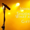 What a Gift - Single - John Shook