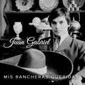 Juan Gabriel - El Sinaloense