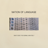 Nation of Language - What Does the Normal Man Feel? artwork