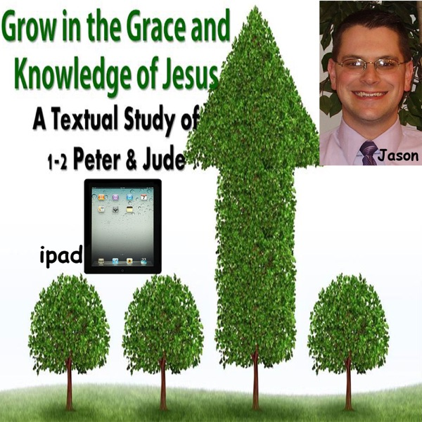 2013-1st Qt Growth in Grace and Knowledge - ipad