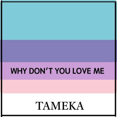 Why Don't You Love Me (Live) - Single - Tameka album