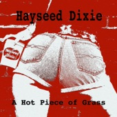 Hayseed Dixie - Keep On Rockin' In The Free World