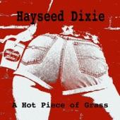 Hayseed Dixie - Runnin' With the Devil