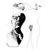 Rob Magill - The Owl