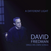 A Different Light - David Friedman