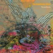 The Kandinsky Effect - Wk51