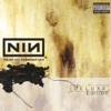 Closer - Nine Inch Nails (The person choking on an apple) Cover Art