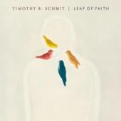 Timothy B. Schmit - The Island