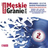 Męskie Granie 2016 (Live)