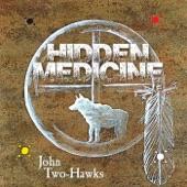 Hidden Medicine