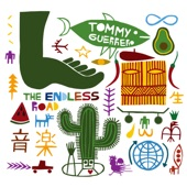 Tommy Guerrero - the endless road