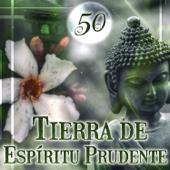 50 Tierra de Espíritu Prudente: Cuidado de la Salud Espiritual, Sonidos de la Naturaleza para la Meditación, Spa, Reiki, Yoga, Mantener la Calma, Completo Relajarse, Profunda Calmante Espiritualidad
