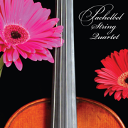 Pachelbel Canon in D - Pachelbel String Quartet - Pachelbel String Quartet