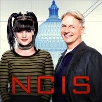 Ncis Staffel 14 Deutschland
