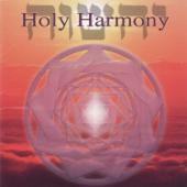 Holy Harmony (feat. Sarah Benson)-Jonathan Goldman