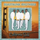 The Seastrunk Brothers - Break Me Down