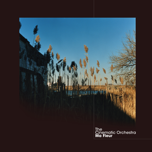 The Cinematic Orchestra - To Build a Home feat. Patrick Watson