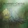 Silhouettes Against the Soil - Blarney Castle