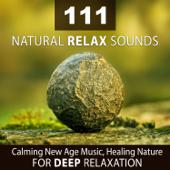 111 Natural Relax Sounds: Calming New Age Music, Healing Nature for Deep Relaxation, Sleeping Problems, Zen Meditation, Stress Release, Spa Detente, Asian Massage Restorative