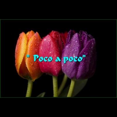 Poco a Poco - Single - Sir Flansi album