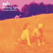 Eels - Things the Grandchildren Should Know