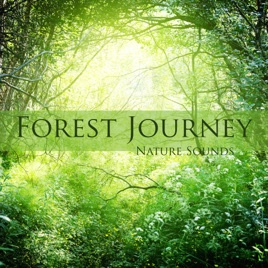 Forest Journey - Nature Sounds and Mind Relaxing Music Inspirational  Ambience (Forest Sounds Included) by Justin Waters