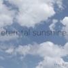 Eternal Sunshine - Single