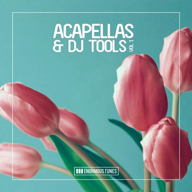 Enormous Tunes - Acapellas & DJ Tools, Vol  1 by Various Artists